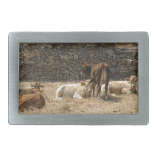 Cows Rectangular Belt Buckle