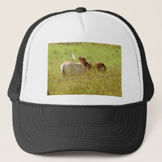 COWS RURAL QUEENSLAND AUSTRALIA TRUCKER HAT
