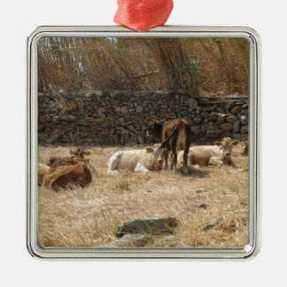 Cows Silver-Colored Square Decoration