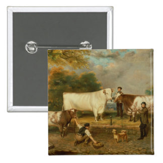 Cows with a herdsman 15 cm square badge