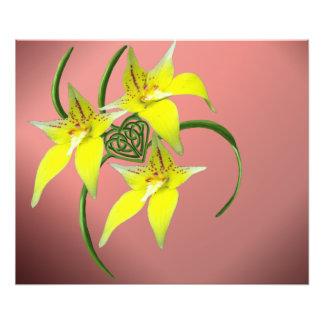 Cowslip Orchid Love Celtic Knotwork Heart Prints Photo Print