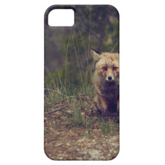 Coyote Case For The iPhone 5