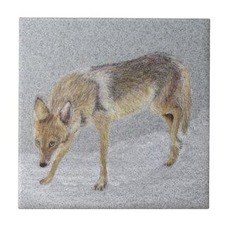 Coyote Ceramic Tile