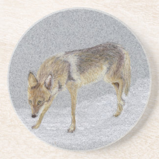 Coyote Coaster