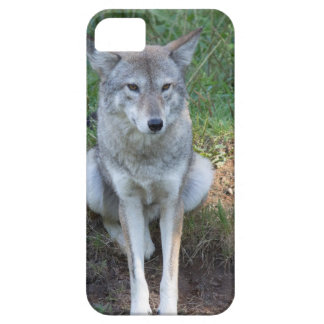 Coyote Collection Case For The iPhone 5