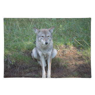 Coyote Collection Placemat