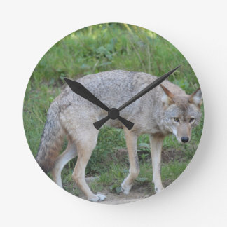 Coyote Collection Round Clock