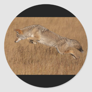 Coyote Flying Classic Round Sticker