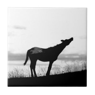 Coyote Horse Ceramic Tile