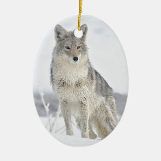 Coyote in Snow at Yellowstone Ceramic Ornament