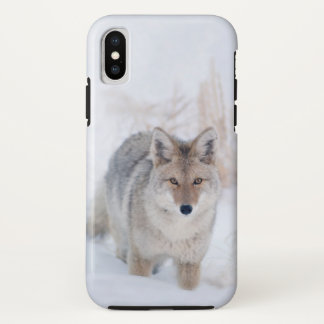 Coyote in Snow at Yellowstone iphoneX case