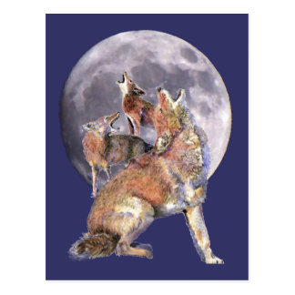 Coyote Pack Howling at the Moon Postcard