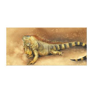 Cozumel, Mexico Iguana Canvas Print