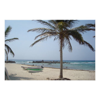 Cozumel Sandy beach Poster