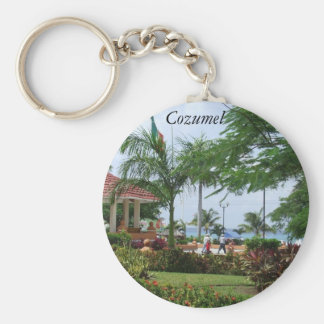 Cozumel Tropical Palm Tree Basic Round Button Key Ring