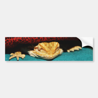 Cozy Bearded Dragon Bumper Sticker