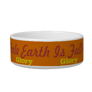 Cozy cat dish Full of His Glory verse! Pet Water Bowls