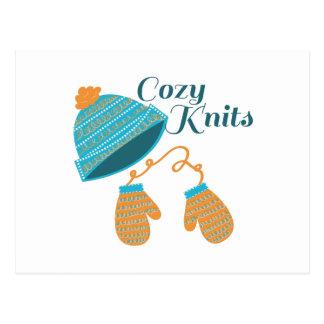 Cozy Knits Postcard