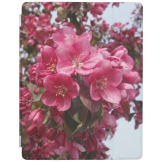Crab Apple Blossoms iPad Cover