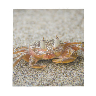 Crab claws notepad