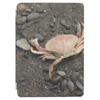 Crab Digital Art ipad Cover