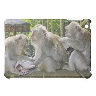 Crab-eating Macaque, Macaca fasciularis, in Ubud iPad Mini Covers