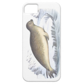 Crab Eating Seal no 1 Artic Marine Mammal Cover For iPhone 5/5S
