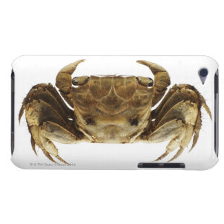 Crab on white background iPod touch covers