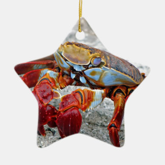 Crab photo ceramic ornament