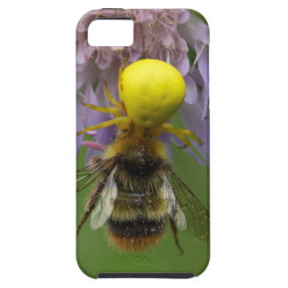 Crab spider (Misumena vatia) with a bumblebee Case For The iPhone 5