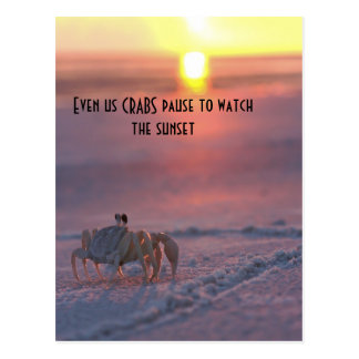 Crab watching the sunset postcard