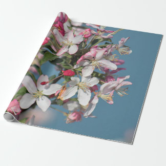 Crabapple blossoms wrapping paper