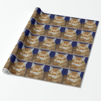Crabby Orange Maine Coon Cat Wrapping Paper