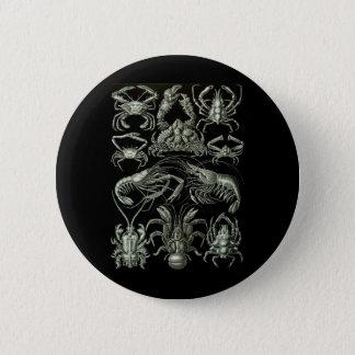 Crabs & Lobsters 6 Cm Round Badge