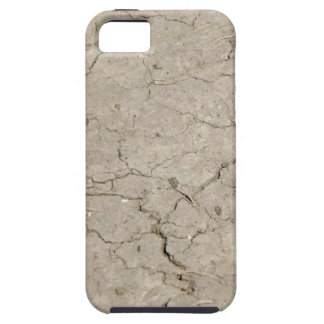 cracked insect iPhone 5 cases