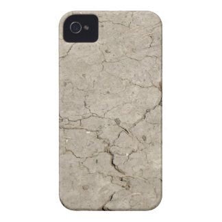 cracked insect iPhone 4 Case-Mate case
