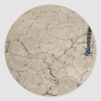cracked insect round sticker