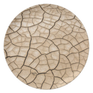Cracked Mud Plate