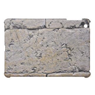 Cracked Stone Wall Close-Up iPad Mini Cover