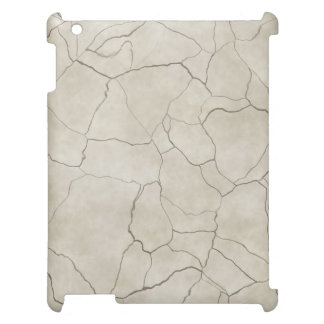 Cracks on Beige Textured Background Cover For The iPad 2 3 4