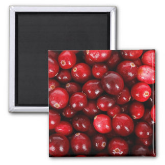 Cranberries Square Magnet