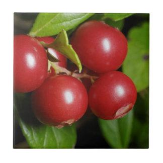 Cranberry Tile