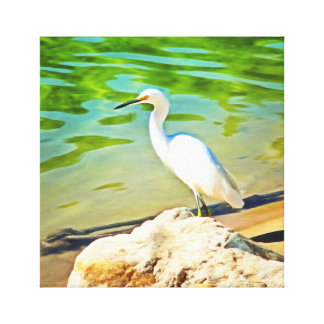 Crane On The Mismaloya River 0335 Canvas Print