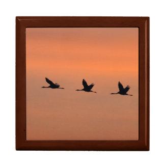 Cranes at sunrise large square gift box