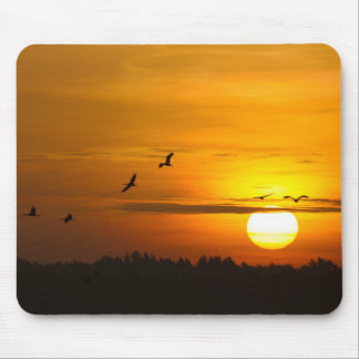 Cranes at sunrise mouse pad