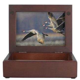 cranes in flight memory boxes