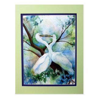 Cranes Kissing Postcard