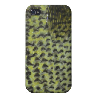 Crappie iPhone Case iPhone 4/4S Covers