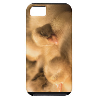 CrawfordBethany camaraderie iPhone 5 Cover