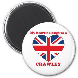 Crawley 6 Cm Round Magnet